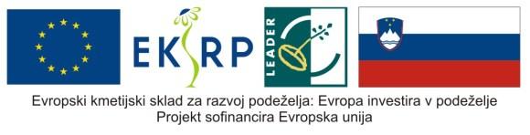 Projekt sponzorira Evropska unija